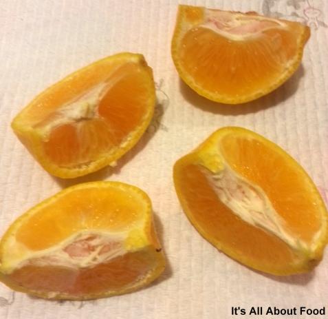 Orange Tip1