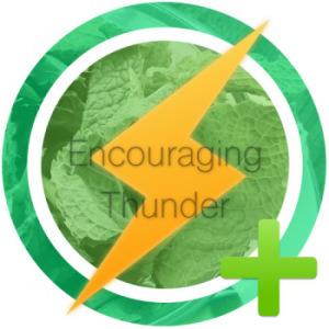 ThunderAward